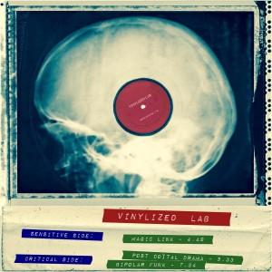 Vinylized Cover